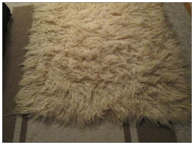 Sheepskin Rug Before