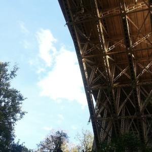 Pgh Bridges in Autumn