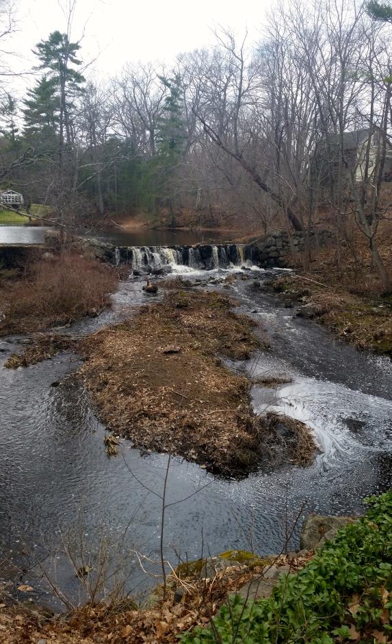 Hampton Falls, New Hampshire #100daysofmiaprima