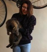 Siberian Cat #100DaysofMiaPrima
