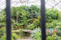 Phipps Conservatory, Pittsburgh