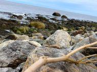 North Hampton Beach, New Hampshire #100DaysofMiaPrima 22