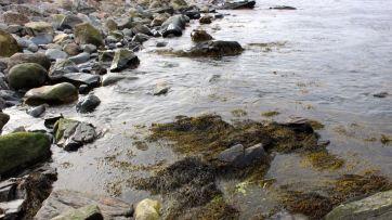 North Hampton Beach, New Hampshire #100DaysofMiaPrima 26