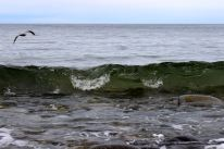 North Hampton Beach, New Hampshire #100DaysofMiaPrima 4