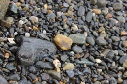 North Hampton Beach, New Hampshire #100DaysofMiaPrima 5
