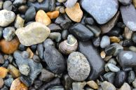 North Hampton Beach, New Hampshire #100DaysofMiaPrima 8