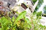 Cimetière du Père-Lachaise Paris #100DaysofMiaPrima 6
