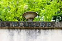 Cimetière du Père-Lachaise Paris #100DaysofMiaPrima 8