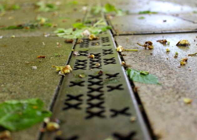 's-Hertogenbosch Den Bosch, The Netherlands #100daysofMiaPrima
