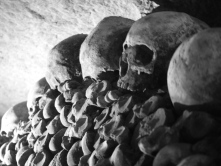 Paris Catacombs #100DaysofMiaPrima