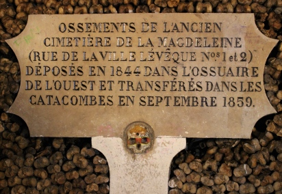 Paris Catacombs #100DaysofMiaPrima